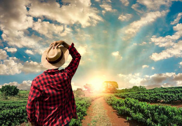 CV pour les métiers de l'agriculture