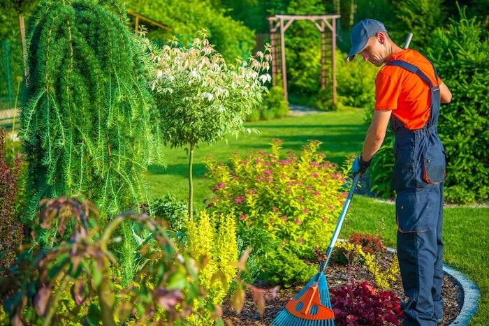 modele CV jardinier