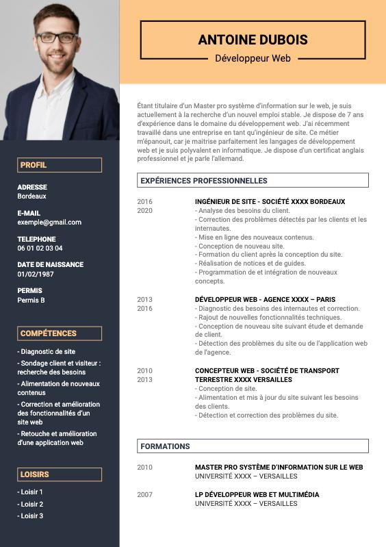 exemple CV developpeur web